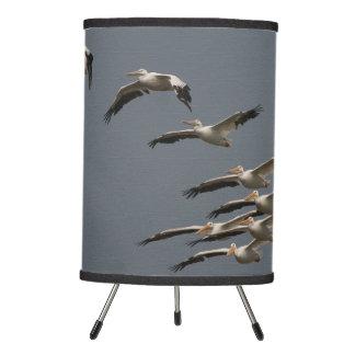 White Pelican Birds Flying Wildlife Animals Lamp