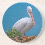 White Pelican Coaster Beverage Coasters