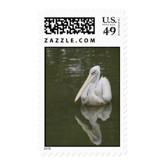 """""""white pelican"""" letter stamps"""