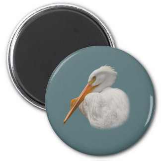 White Pelican Magnet