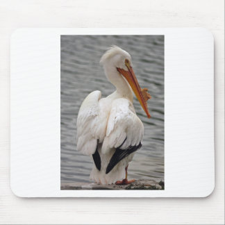 White Pelican Mouse Pad