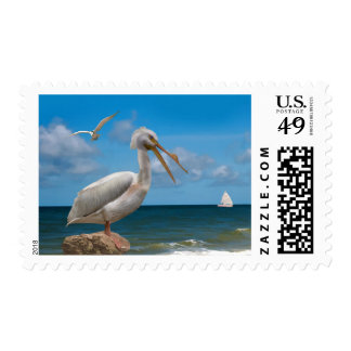 White Pelican on a Rock Postage Stamps