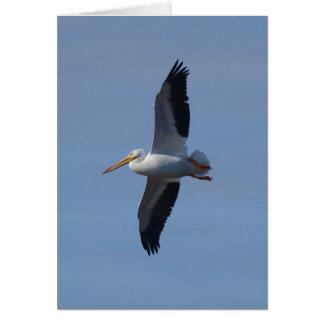 White Pelican Takes Flight Card