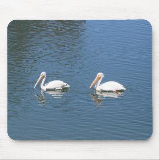 white pelicans mousepad