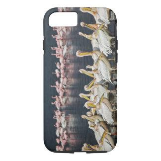 White Pelicans, Pelecanus onocrotalus, Lake iPhone 7 Case