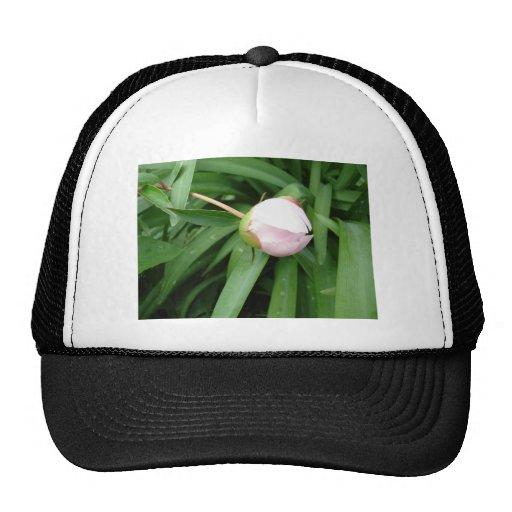 White Peony Bud Trucker Hat