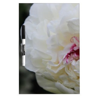 White Peony Dry-Erase Board