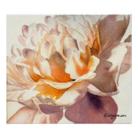 White Peony Watercolor Poster Print print