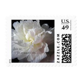 White Peony Wedding Small Stamp Invitation Postage