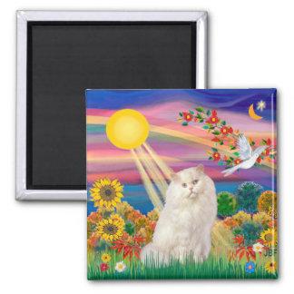 White Persian Cat - Autumn Sun Magnet