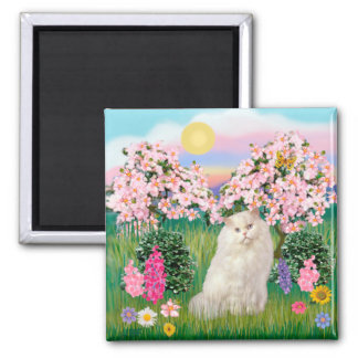 White Persian Cat - Blossoms 2 Inch Square Magnet