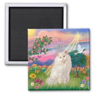 White Persian Cat - Cloud Angel Magnet