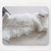 White Persian Cat Mouse Pad