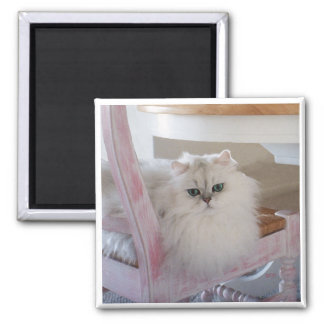 White Persian Cat on a Pink Chair 2 Inch Square Magnet