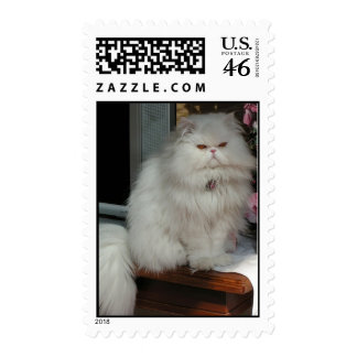 White Persian Cat Postage Stamp