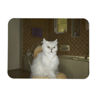 White persian cat sitting on chair in bathroom magnet