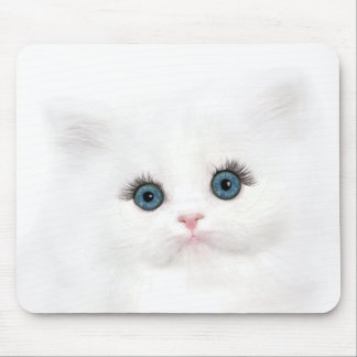 White persian kitten face mouse pad