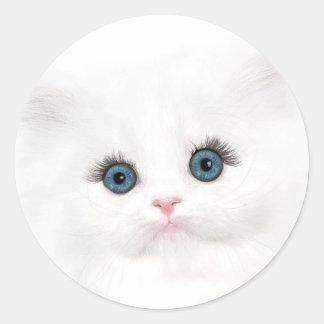 White persian kitten face stickers