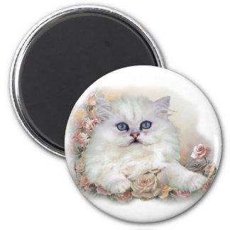 White Persian Kitten On Roses Magnet