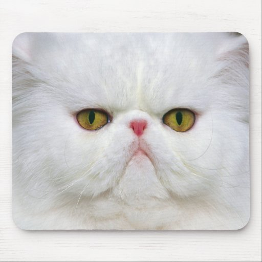 White Persian Mouse Mat