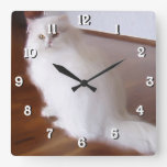 White Persian square cat  clock