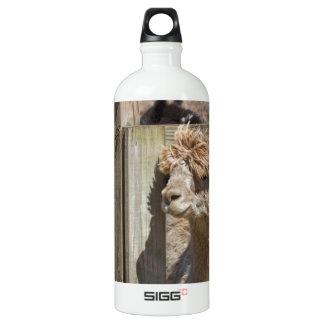 White Peruvian Alpaca - Vicugna pacos Aluminum Water Bottle