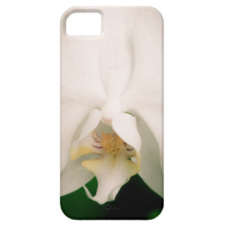 White Phalaenopsis Orchid iPhone SE/5/5s Case