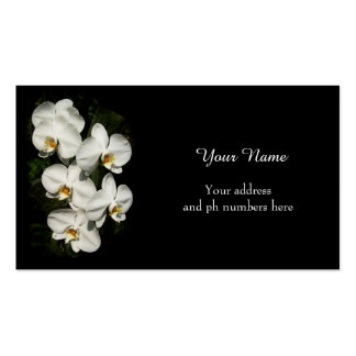 White phalaenopsis orchids business card
