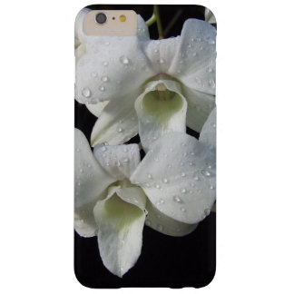 White Phalaenopsis Orchids Barely There iPhone 6 Plus Case