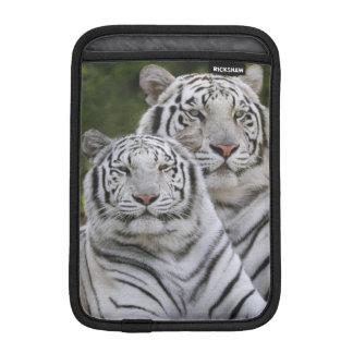 White phase, Bengal Tiger, Tigris iPad Mini Sleeves