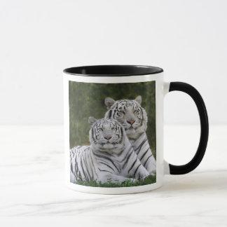 White phase, Bengal Tiger, Tigris Mug