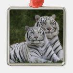 White phase, Bengal Tiger, Tigris Square Metal Christmas Ornament