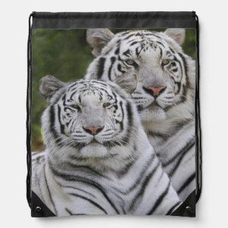 White phase, Bengal Tiger, Tigris Cinch Bag