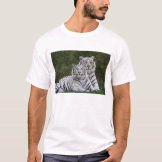White phase, Bengal Tiger, Tigris T-Shirt