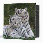 White phase, Bengal Tiger, Tigris Vinyl Binders