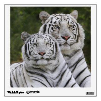 White phase, Bengal Tiger, Tigris Wall Decal