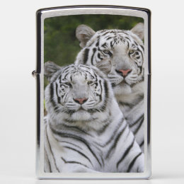 White phase, Bengal Tiger, Tigris Zippo Lighter