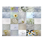 White photography collage post card