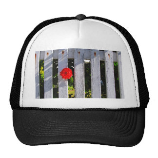 White picket fence red rose hats