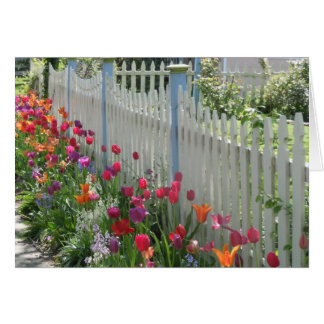White Picket Fence With Tulips note card