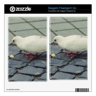 White pigeon skin for the FreeAgent go
