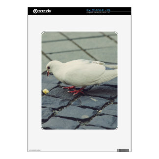 White pigeon skins for the iPad