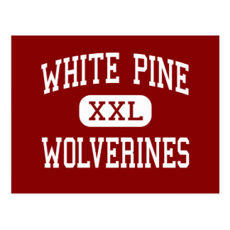 White Pine - Wolverines - Middle - Saginaw Postcard