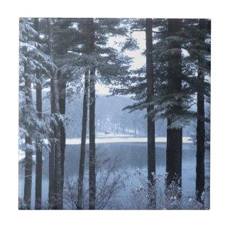 White Pines in Blue Light --- Ceramic Tile