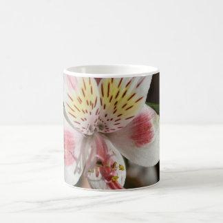 White/Pink Alstroemeria Mug