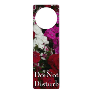 White, Pink and Red Dianthus Floral Photography Door Hanger