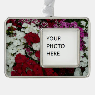 White, Pink and Red Dianthus Floral Photography Ornament