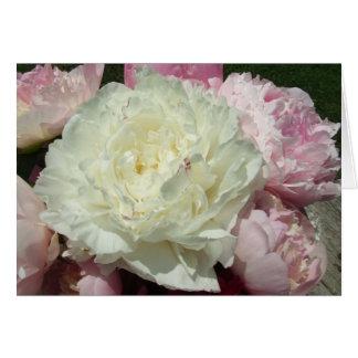 White Pink Peonies Blank Inside Greeting Card