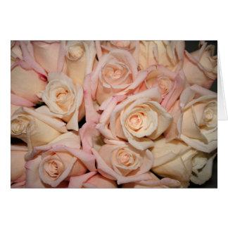 white pink rose card