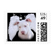 White Pit Bull Dog Angel Postage